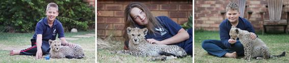 meet-storm-the-cheetah-cub-4